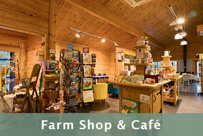 Farm shop and cafe